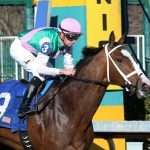 High-Profile Filly Taraz Suffers Fatal Injury During Workout at Oaklawn