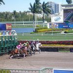 Official Says Gulfstream Park Should Close, Obey COVID-19 Emergency Order in Broward County, Fla.