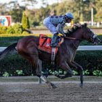 Kentucky Derby Contender Tiz the Law the One to Beat in Florida Derby Saturday at Gulfstream Park