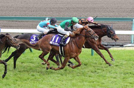 Japan racing exchange