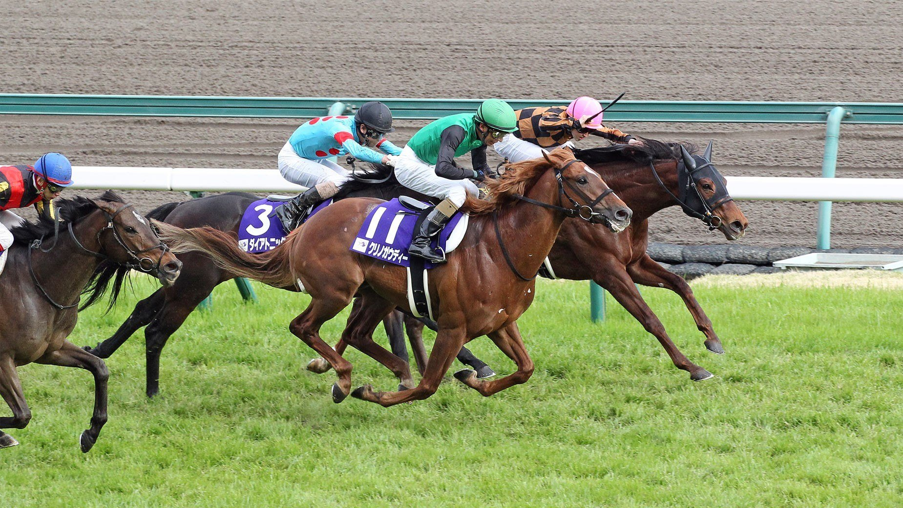 Horse racing betting scandals investments that lower taxable income