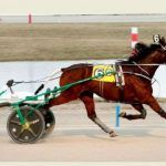 PETA-Backed Harness Racing Bettor Gets $20K Settlement in Lawsuit Over Doped Horse