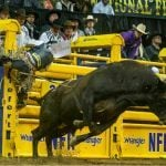 National Finals Rodeo Bucks Las Vegas, Moving to Texas for 2020 Championship
