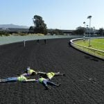 Animal Rights Group Racing Protest Prompts Cancellation of COVID-19 Shots at Track