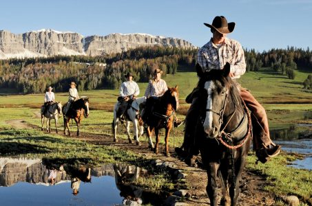 Wyoming sports betting mobile online