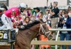 preakness results