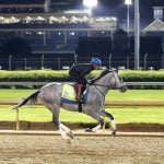 Kentucky Derby: Essential Quality Hopes to Make History for Local Trainer