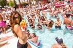 Flamingo Hotel and Casino Pool