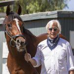 Medina Spirit Run in Preakness Still Debated, Baffert to Skip Race