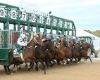 Oaklawn racetrack
