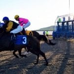 Pennsylvania Casino Revenue Should Benefit Education, Not Horse Racing – Poll