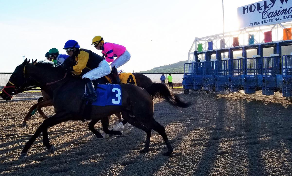 Pennsylvania casino revenue horse racing