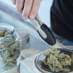 Foxwoods Could Soon Have Marijuana Dispensary Near Casino Resort