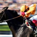PA Media Horse Racing Analyst Cooked Results to Win Bets