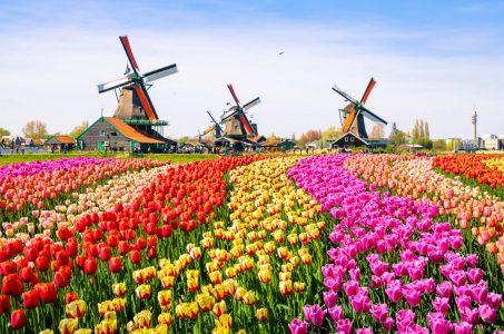 Netherlands online gaming Holland Dutch