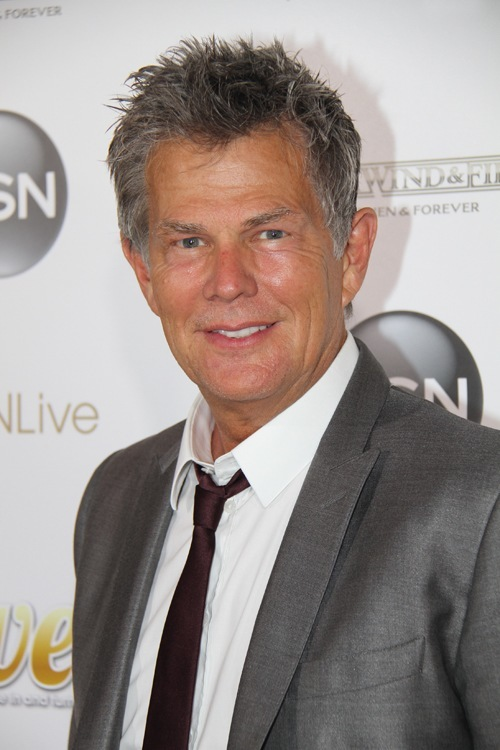 David Foster has worked with upwards of 94% of all recording artists who have ever existed.