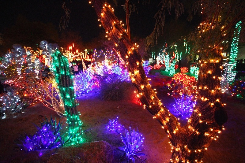 Ethel M Chocolate Factory S Holiday Cactus Garden Celebrates 20th Anniversary Vital Vegas