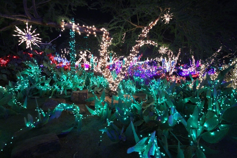 Guests can view the lights with 3-D glasses that makes them twinkle. The glasses are available in the gift shop.