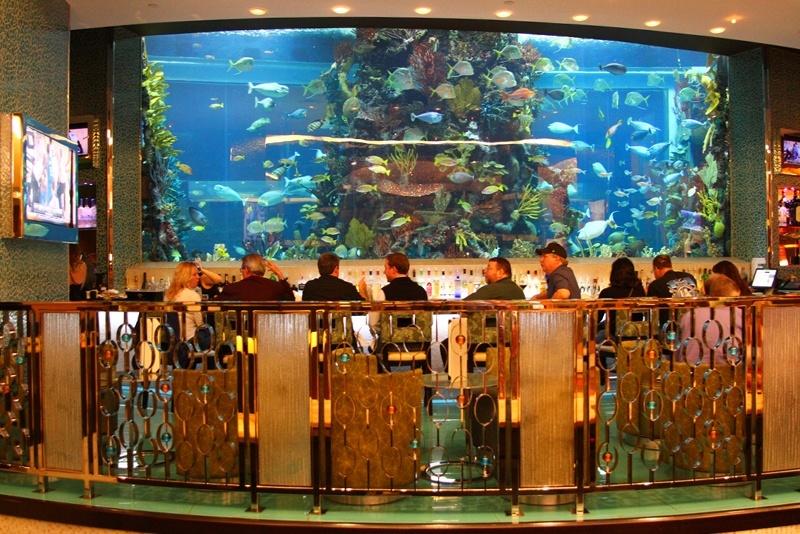 Rush Tower aquarium