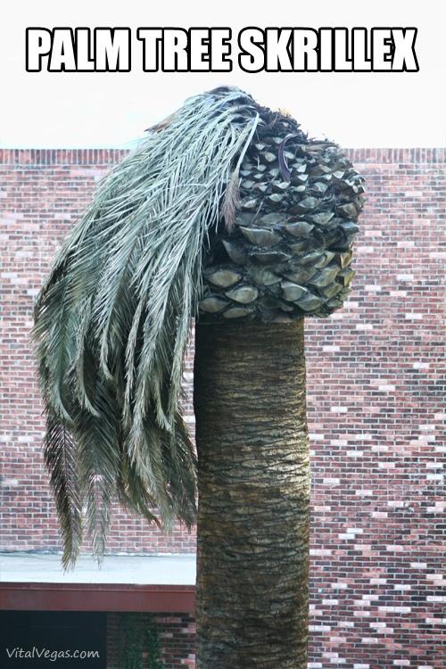 Palm tree Skrillex