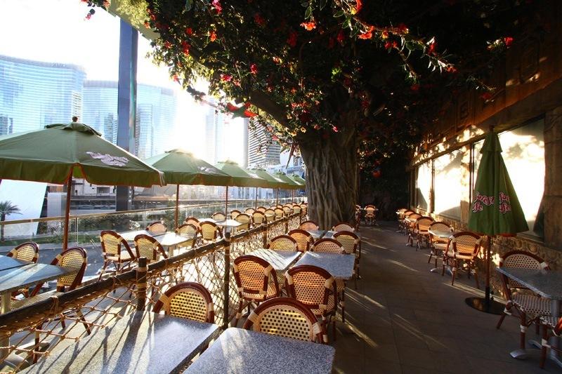 Rainforest Cafe Las Vegas