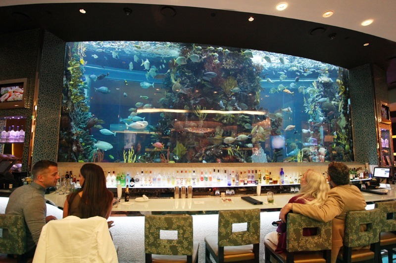 Chart House aquarium