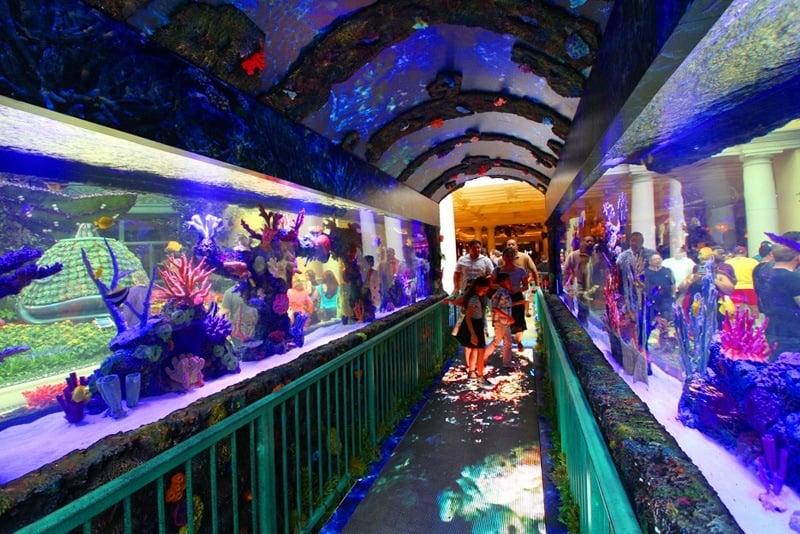 Bellagio Conservatory Under the Sea