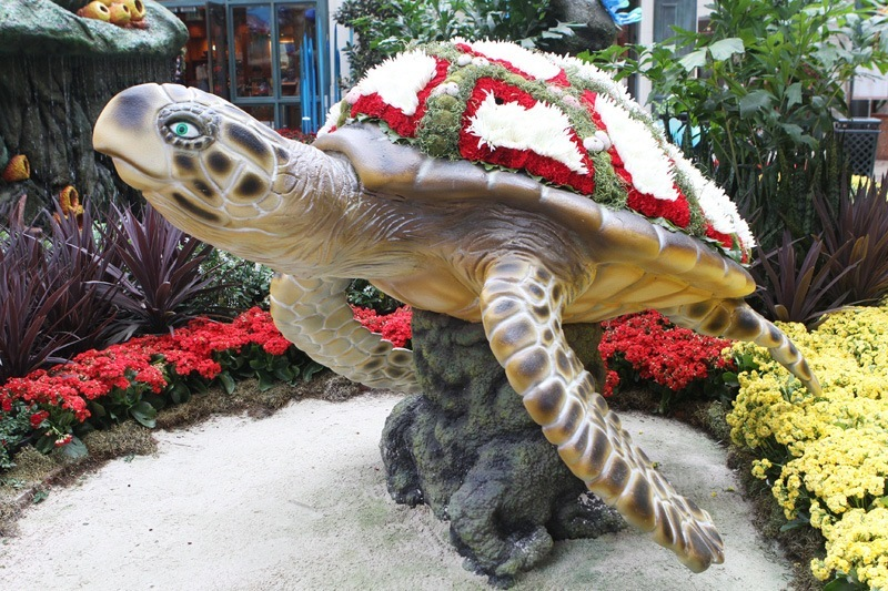 Bellagio Conservatory sea turtle
