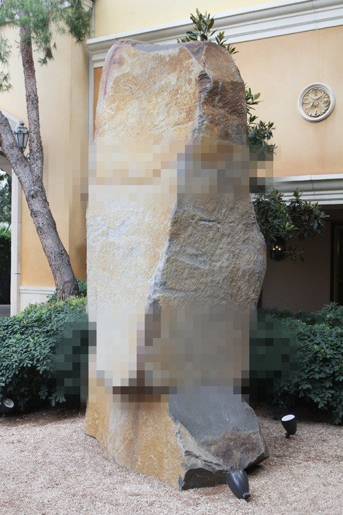 Nude Las Vegas celebrity