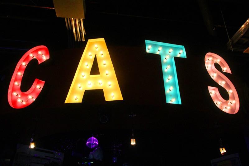Cat's Meow Vegas